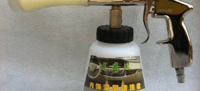 Химчистка салона автомобиля с помощью биоматериалов